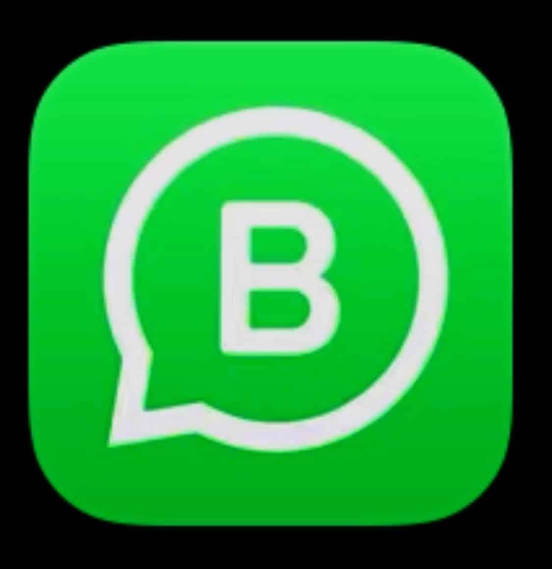 Mit Whatsapp Business den Messenger DSGVO konform nutzen.